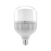 Galinga LED lemputė E27 GTV (F100